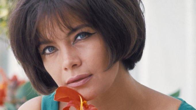 Η Τιτίκα Στασινοπούλου αποκαλύπτει ποιος είπε στην Τζένη Καρέζη «να τραβηχτείς γιατί έχεις γίνει σαν πλισές»